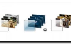 Theme Windows 7 Microsoft Chien chat Kilimandjaro