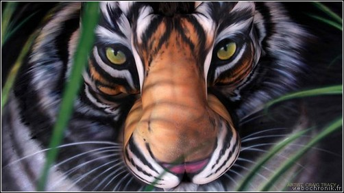 body painting pictures - body painting video - body-painting - tigre - craig tracy
