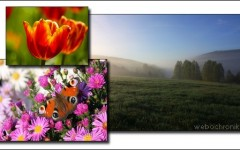 Themepack pour Windows 7 - Theme Czech Spring