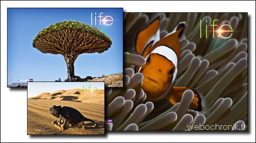 Themepack-pour-Windows-7-Theme-Life