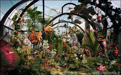 Photos Lori Nix - Miniatures - Jardin Botanique