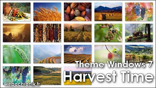 theme-windows 7-themepack-fond_d'ecran-Harvest_Time